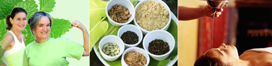 Ayurveda and Herbal Remedies