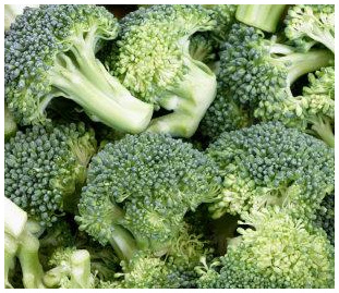 broccoli cures diabetic