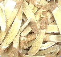 Astragalus root extract boosts immunity