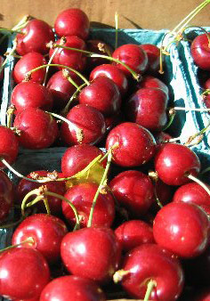 Tart cherries an chronic inflammation