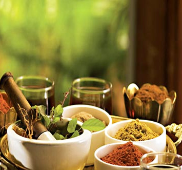 World's leading institutes plan mega study on Ayurveda's healing powers