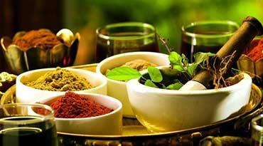 Indian Government opens Ayurveda Institutes for research and education
