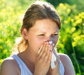 Ayurvedic Remedies for Allergy